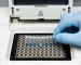 PCR RT - 2